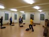 <h5>Frauensportgruppe 2011</h5>